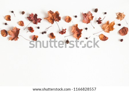 Autumn composition. Pattern made of dried leaves on white background. Autumn, fall concept. Flat lay, top view, copy space #1166828557