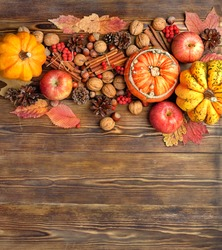 autumn composition. pumpkins, cones, berries, apples, nuts, cinnamon on wooden table background. fall season. harvest, thanksgiving concept. flat lay. copy space