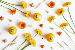 Autumn composition. Pumpkins, gerbera flowers on white background. Autumn, fall concept. Flat lay, top view