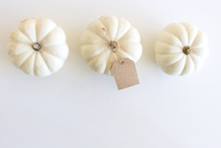 Autumn composition. White pumpkins with a blank gift, price tags on white table background. Fall, Halloween and Thanksgiving design. Business concept. Styled stock photography, selective focus.