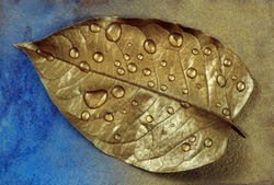 Autumn concept. Autumn colors. Golden leaf in drops of water on a blue watercolor background