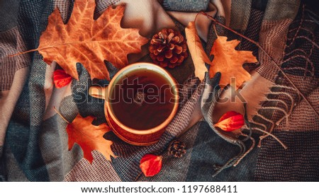 Autumn concept image with hot mug of tea, leaves, pinecones, physalis and warm scarf. Warm drink in cold weather. Home decoration.