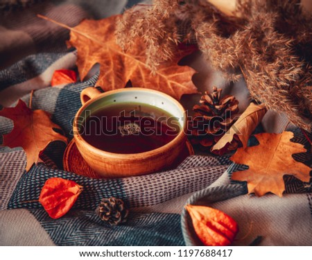Autumn concept image with hot mug of tea, leaves, pinecones, physalis and warm scarf. Warm drink in cold weather. Home decoration.  #1197688417