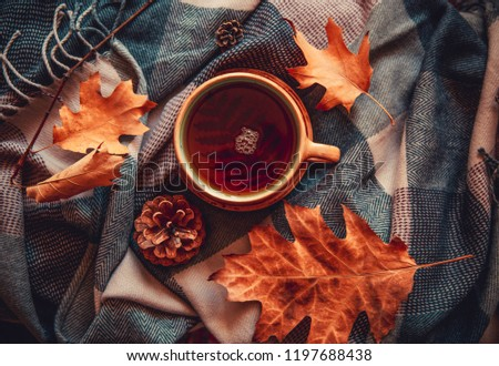 Autumn concept image with hot mug of tea, leaves, pinecones, physalis and warm scarf. Warm drink in cold weather. Home decoration.  #1197688438
