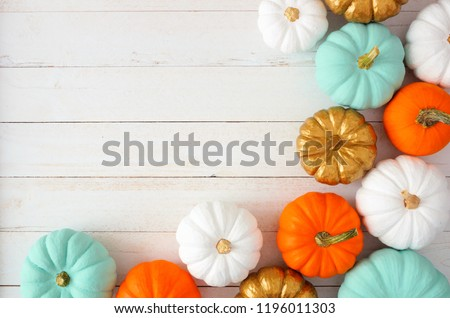 Autumn corner border of various colorful pumpkins on a white wood background. Top view with copy space. #1196011303