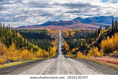 Autumn country road to mountains. Sutumn forest road landscape. Autumn forest road panorama. Autumn forest road view