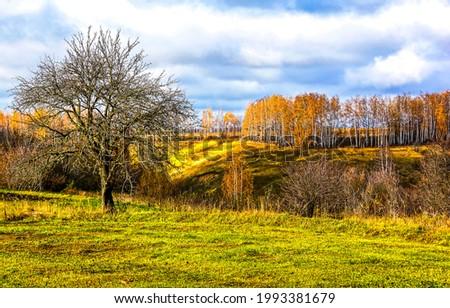 Autumn countryside landscape. Autumn nature landscape. Autumn landscape in autumnal nature