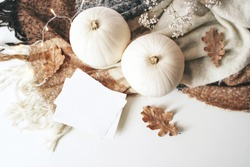 Autumn cozy composition. Blank card mockup scene. White pumpkins, dry oak leaves, Christmas lights and wool plaid on white table background. Thanksgiving, fall, Halloween concept. Flat lay, top view.