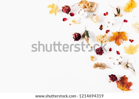 Autumn creative composition. Frame made of dried autumn leaves, dried roses,cotton flowers on white background. Autumn, fall modern concept. Flat lay, top view, copy space  #1214694319
