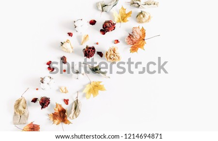 Autumn creative composition. Frame made of dried autumn leaves, dried roses,cotton flowers on white background. Autumn, fall modern concept. Flat lay, top view, copy space  #1214694871