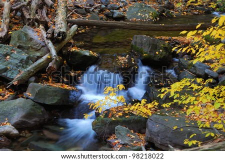 Autumn creek closeup with rocks and yellow leaves in forest in Autumn.