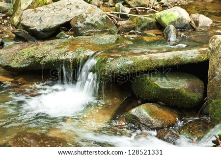 autumn creek in mountain forest