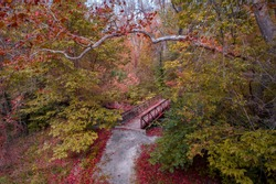 Autumn Crossing - trees changing color around the little bridge in the woods showing the autumn colors to brighten the path.  Photo was taken with a drone in a woods in Beavercreek, Ohio.