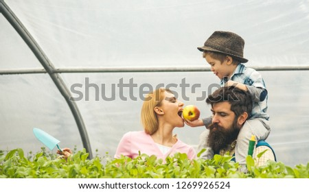autumn cultivation. autumn land cultivation. family in greenhouse making autumn cultivation. autumn cultivation concept. green life