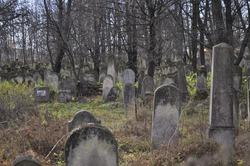 Autumn day in a Jewish cemetery. Radauti, Romania