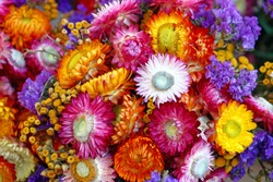Autumn decoration of mix of colorful flowers, natural background