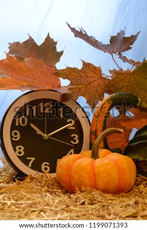 Autumn decorative scenery to illustrate for halloween, thanksgiving or just fall designs. #1199071393