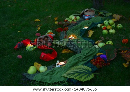 Autumn decore for the seasonal decorations with harvest and candles #1484095655