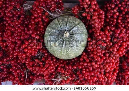 Autumn decore with viburnum and pumpkin