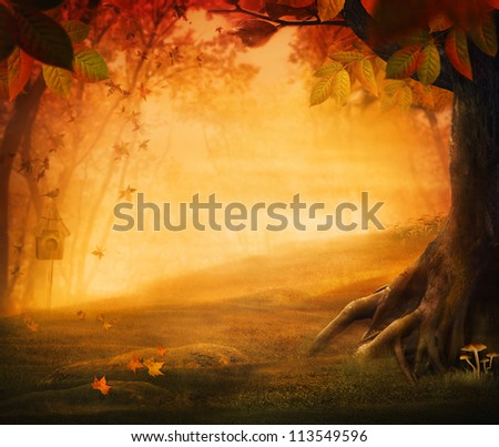 Autumn design - Forest in fall. Autumn valley with mushrooms Falling leaves and bird house in he background.  Space for your autumnal text. Fall background concept with copyspace.