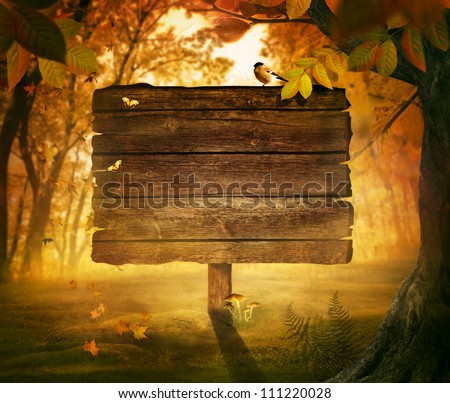 Autumn design - Forest sign. Wooden sign in autumn valley with woods,  tree, falling colorful leaves, mushrooms and bird. Space for your autumnal text. Fall background concept with copyspace.