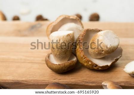 Autumn dinner concept - cutting board with copy space - fresh porcini boletus oak mushrooms, high quality,restaurant menu, a la carte Stok fotoğraf ©