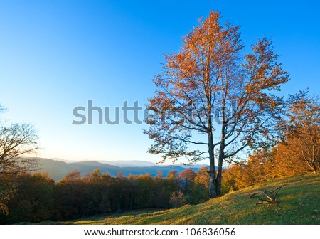 Autumn evening  landscape with lust sunlight on mountains and evening glow in sky