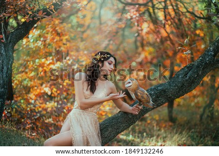 autumn fairy tale. Fantasy woman sitting on tree branch with a barn owl. Forest nymph girl holds a white bird in hands. Portrait of romantic lady in golden dress. Art nature, orange yellow trees