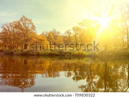 autumn, fall, leaf fall, fall of the leaf. a large natural stream of water flowing in a channel to the sea, a lake, or another such stream