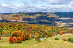 Autumn fall red color maple trees and farm house land rolling hills aerial above high angle view landscape in Blue Grass, Highland County, Virginia