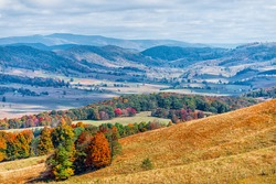 Autumn fall red colorful maple trees and farm land rolling hills aerial above high angle view landscape in Blue Grass, Highland County, Virginia