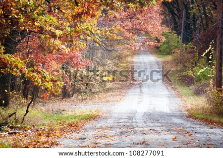 Autumn fall road surrounded by red and yellow leave trees - stock photo
