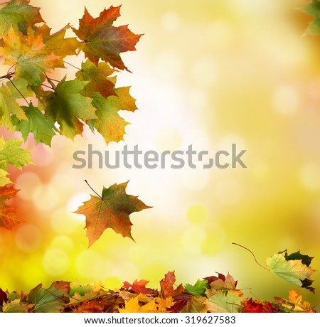Autumn falling leaves background #319627583