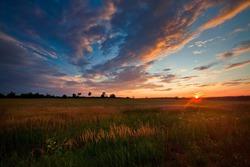 Autumn field at sunset