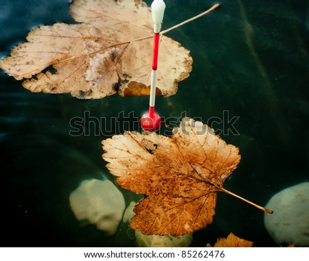 Autumn fishing. Bobber float in water with yellow leafs.