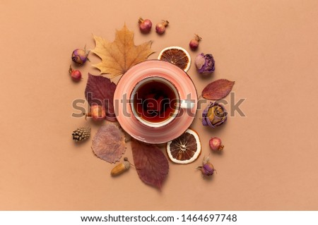 Autumn Flat lay composition. Cup of tea, autumn dry bright leaves, roses flowers, orange circle, cones, decorative pomegranate, cinnamon sticks on brown beige background top view. Autumn, fall concept #1464697748