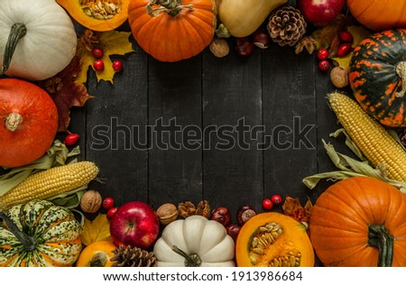 Autumn flat lay composition, with copy space on wooden background. Variety of edible and decorative gourds and pumpkins, rosehips, walnuts, cones, apples, kaki fruit, chestnuts and corn on the cob.