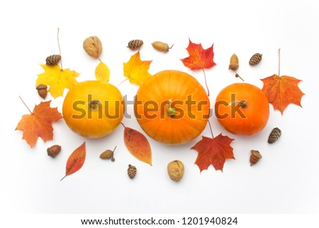 Autumn flat lay with various pumpkins and dried leaves on white background, top view - Shutterstock ID 1201940824
