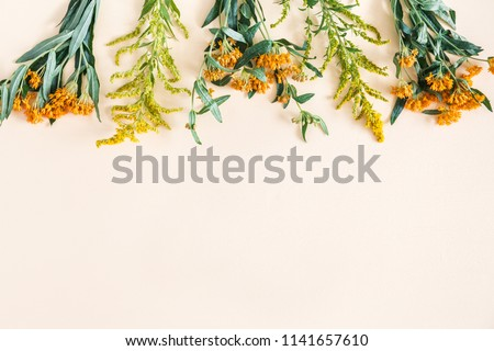 Autumn floral composition. Border made of fresh flowers on pastel beige background. Autumn, fall concept. Flat lay, top view, copy space
