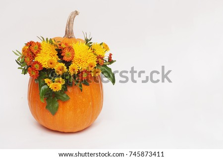 Autumn flower arrangement in pumpkin vase on #745873411