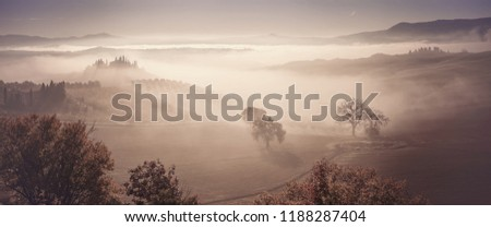 Autumn fog in valley with olive orchards and vineyards, vintage landscape panorama