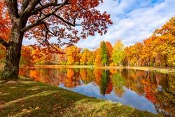Autumn foliage in Alexander park, Pushkin (Tsarskoe Selo), Saint Petersburg, Russia