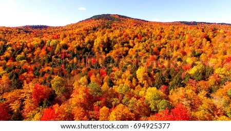 Autumn Foliage in Maine Forest with Brilliant Red and Orange Leaves - Aerial Shot From Newry, Maine, USA