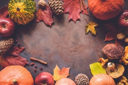Autumn food border background with pumpkins, apples, pine cones, spices, mushrooms, berries and fallen leaves with copy space for text. Top view autumn food backdrop