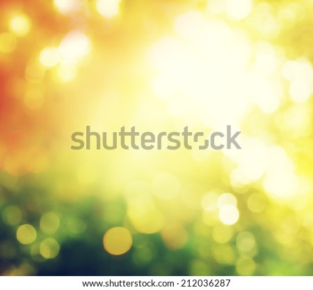 autumn forest bokeh