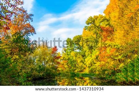 Autumn forest lake trees landscape. Autumn forest lake trees. Autumn forest lake. Forest lake in autumn season