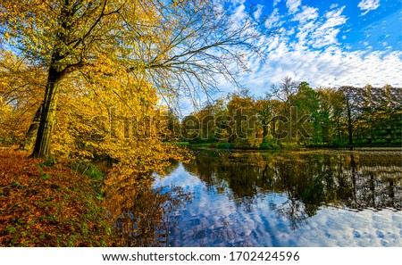 Autumn forest lake water landscape. Lake in autumn forest. Autumn lake forest landscape