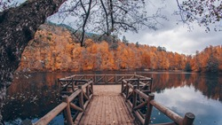 Autumn forest lake water landscape, yedigoller bolu turkey
