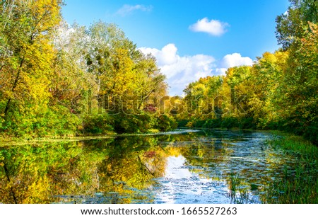 Autumn forest lake water view. Forest lake autumn. Autumn forest lake landscape