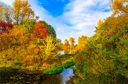 Autumn forest pond landscape. Forest pond in autumn season. Autumn forest pond view. Autumn pond in forest